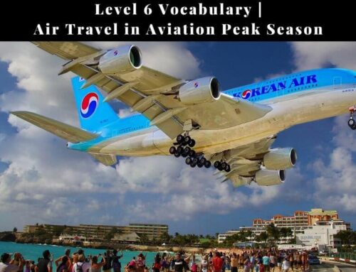 ICAO Vocabulary Level 6: Air Travel in Aviation Peak Season